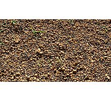 Brown Gravel Photographic Print