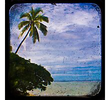 Trees & Beach Photographic Print