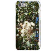 White Gum Blossoms iPhone Case/Skin