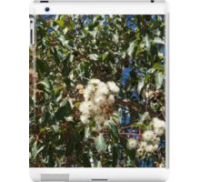 White Gum Blossoms iPad Case/Skin