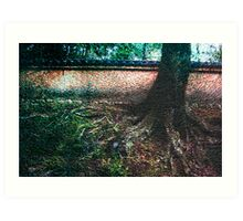 Temple tree and roots, Japan Art Print