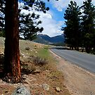 Rocky Mountain Highway To Serenity by Pamela Hubbard