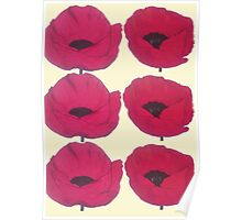 Red Poppies for Pops Poster