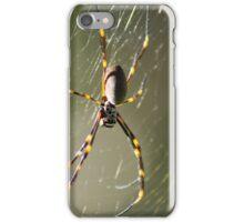 Golden orb weaver iPhone Case/Skin