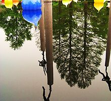 Your World Upside Down by Christina Johnson
