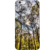 The Silent Forest  iPhone Case/Skin