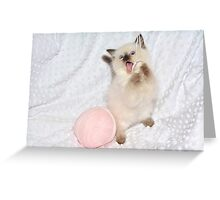 Goofy Kitty Greeting Card