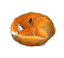 Foxy naps Photographic Print