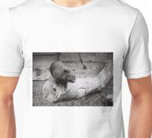 A curious little wombat Unisex T-Shirt