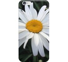 White Daisy iPhone Case/Skin