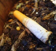Cigarettes Will Kill You by Brigette-Renee Basarab