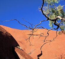 A little part of Uluru by dozzam