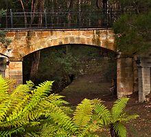 Footbridge by Chris Cobern