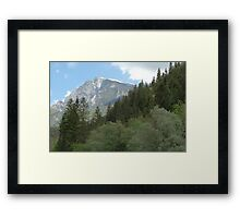 Forests and mountains Framed Print