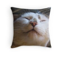 Audreys Lad Throw Pillow