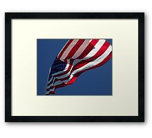 Looking Up With Pride Framed Print