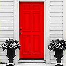 red door in winter white by lastgasp