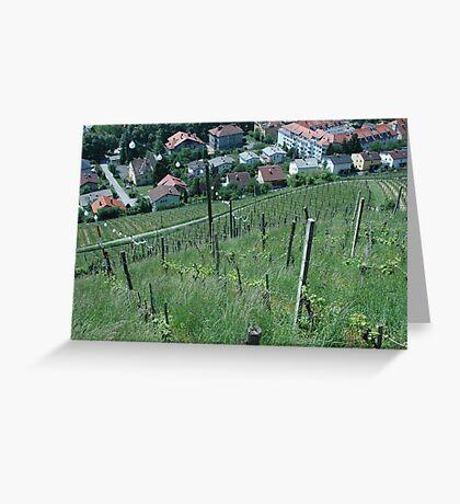 Vineyard towards town Greeting Card