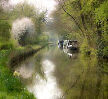 Spring Canal by Brett Trafford