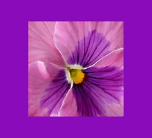 Pink Purple Pansy Flower Macro by SaraValor
