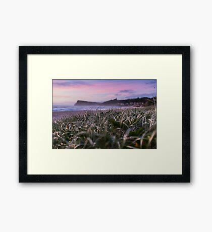 Pastel Morning Tones - Lennox Head Framed Print