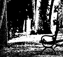 The Empty Bench by KBSImages