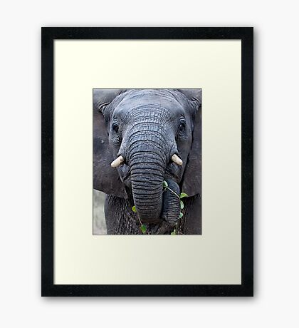 The Charge Framed Print