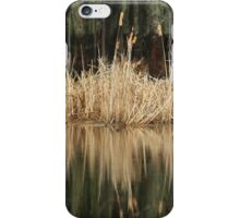 On a Rainy Morning at the Marsh iPhone Case/Skin