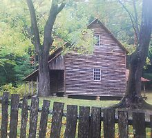 Cades Cove Homestead in Smoky Mountains National Park by photobryan
