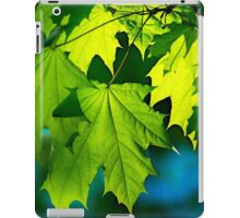 Tales From The Maple Wood iPad Case/Skin