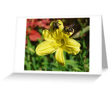 Bumbling Bumble Bees Greeting Card