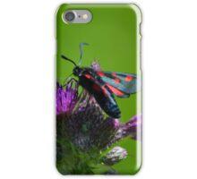 five spot burnet on thistles iPhone Case/Skin