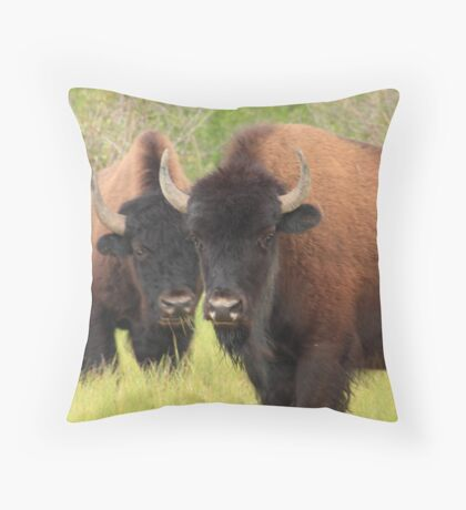 Bison attention Throw Pillow