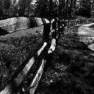Rustic Fence by Country  Pursuits