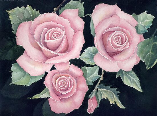 Pink Roses by Margaret Harris