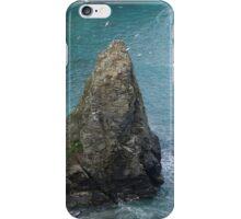Rock in the sea iPhone Case/Skin