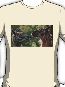 Sweet Llamas T-Shirt