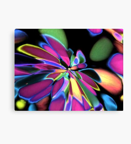 out of the night Canvas Print