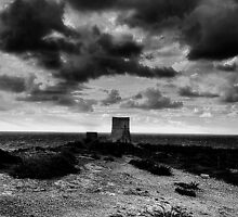 along the watch tower. by stridersraven