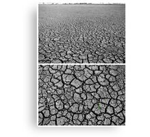 Dangars Lagoon, Uralla, New South Wales, Australia - Diptych Canvas Print