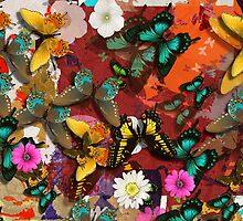 The Butterflies by wjclark63