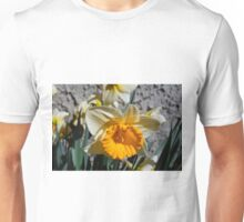 yellow and white  daffodil flowers. floral photography. Unisex T-Shirt