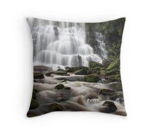Nelson Falls Throw Pillow