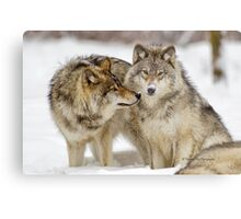 Love you sweetie... - Timber Wolves Metal Print