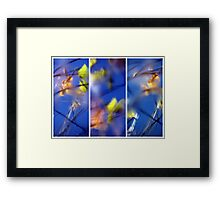 Beyond Blue - Triptych Framed Print