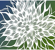 flower (green-blue) Photographic Print