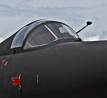 U-2 ...  by Jim Haley