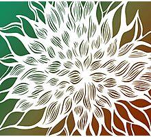 flower (orange-green) Photographic Print