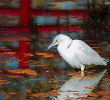 Snowy Egret by MPRPhoto