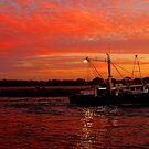 Mooloolaba Trawler by Kate Wall